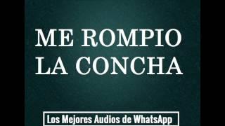 ME ROMPIO LA CONCHA - Los Mejores Audios De WhatsApp