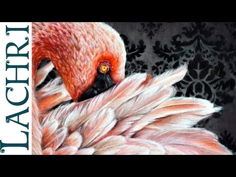 How to blend prismacolor colored pencils with paint thinner- flamingo tutorial by Lachri