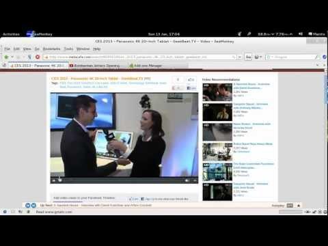 Adobe Flash Versus GNOME Totem Vegas webm