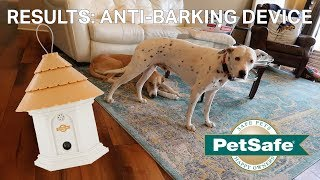 Anti-Dog Barking Device Results | Petsafe Elite Outdoor Bark Control Device