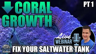 Poor / No Saltwater Coral Growth - Fix Your Problem Saltwater Tank