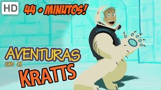 Aventuras com os Kratts (HD Português) - Sombra, A Onça-preta & Insetos Ou Macacos?