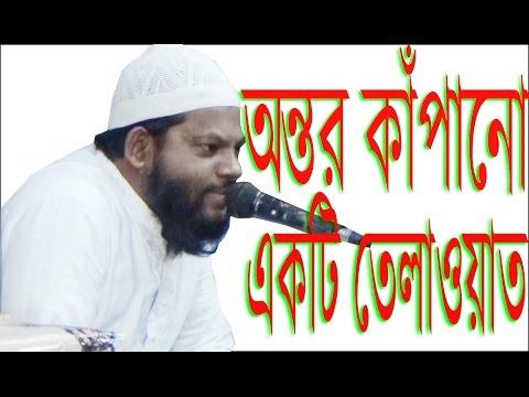 অন্তর কাঁপানো একটি তেলাওয়াত ! Kari Saidul Islam Asad