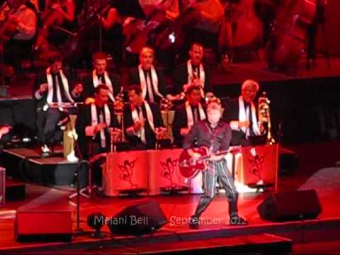 Brian Setzer at the Hollywood Bowl ~ Sexy and 17