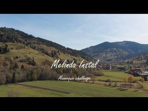 Mannequin Challenge 2019 Melinda Instal