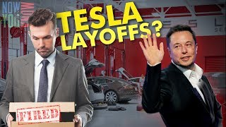 Tesla Time News - Tesla Layoffs???