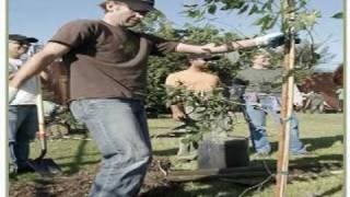 Watch Stone Gossard Anchors video