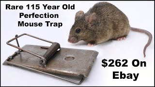 115 Year Old Perfection Mouse Trap Cost $262 On eBay - Mousetrap Monday