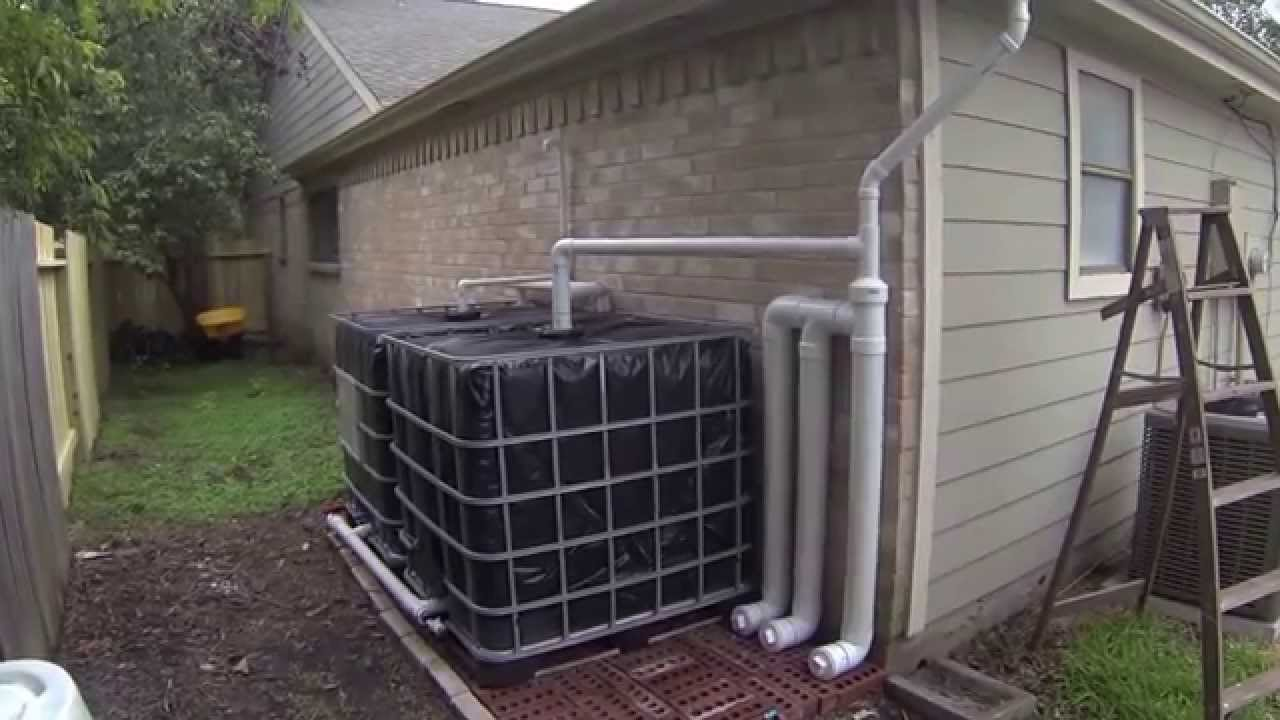 how to use an ibc to collect rainwater