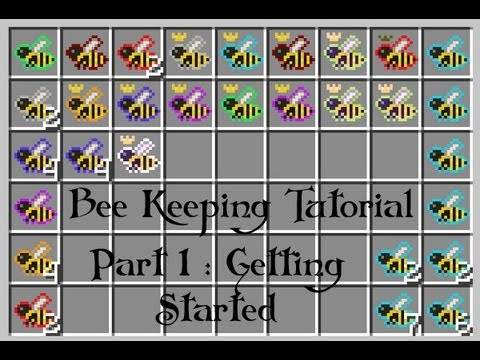 FTB - Forestry Bee Keeping Guide : Part 1 Getting Started