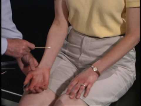Normal Sensory Exam ; Tactile Movement