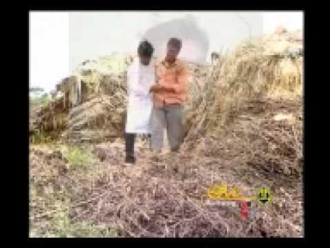 Preetiya Parivala.mp4 Kannada Janapada Geethe video