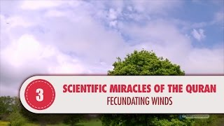 Video: In Quran 15:22, fertilizing Winds propogate the fruit and plant seeds - Quran Miracle