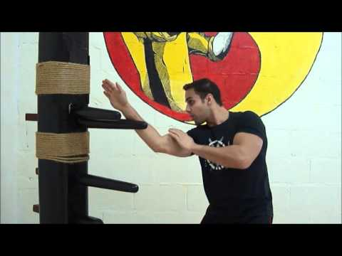 MUDJONG JEET KUNE DO - Wooden Dummy Trapping Exercises Image 1