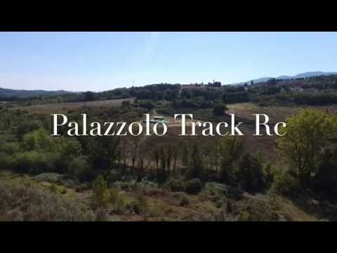 PALAZZOLO TRACK RC (Parrot Bebop 2)