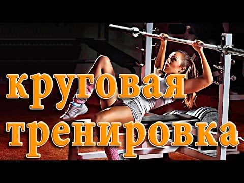 Тренировки для женщин Круговая тренировка