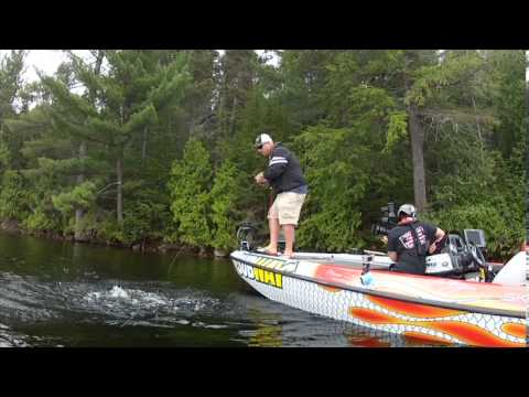 Square Bill Crankbait Smallmouth Bass - Facts of Fishing THE SHOW
