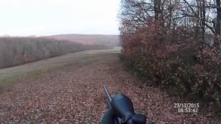 Tir d'un chevreuil à l'approche (Haute-Garonne) HD