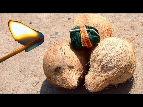 3 Coconuts Vs Chota Bomb | Diwali Special PRANK Videos | Most FUNNY Diwali Crackers PRANK Video