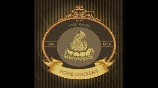 Home Chickens -Christmas Chicks -