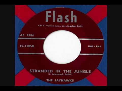 Jayhawks - Stranded in The Jungle