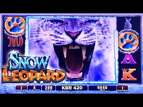 WMS ~ SNOW LEOPARD SLOT MACHINE BONUS WIN FREE SPINS