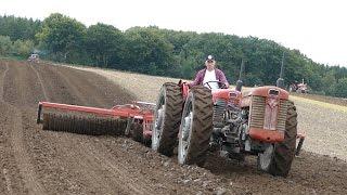 Massey Ferguson 65 Tandem Tractor | American Ferguson Days - Tjele Gods