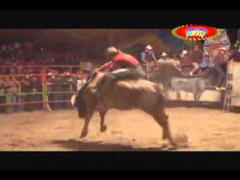 Rancho los dos potrillos despedazo a los Michoacanos