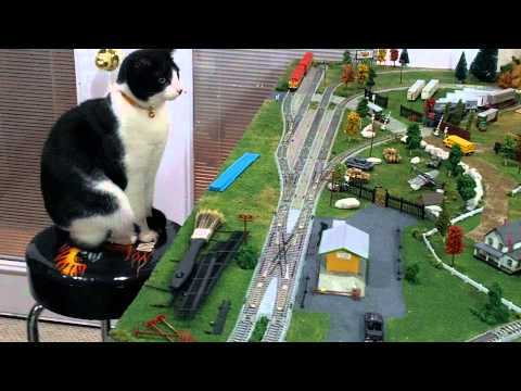 Lucy The Train Engineer