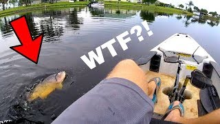 Hooked HUGE Mystery Fish in the EYE!!! (WEIRD!!!)
