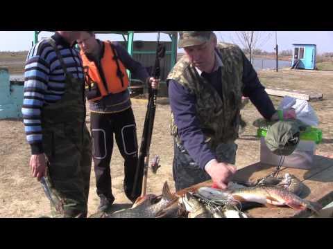 сентябрь рыбалка в харабалинском районе видео