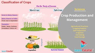 Crop Production and Management Grade 8 Science Full Chapter | LearnFatafat