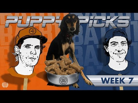 BATB 11 | Puppy Picks: Week 7