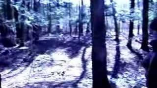 The Devil's Hand: Trailer