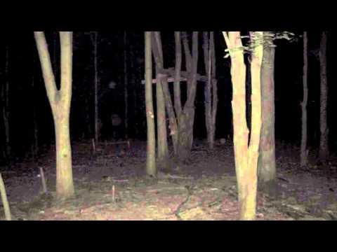 அந்த ஒத்தை அடி பாதை-Ghost story tamil