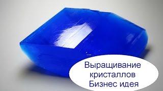 Выращивание кристаллов  в домашних условиях. Бизнес идея