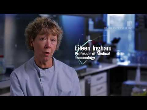 Functional engineering of soft tissues: Professor Eileen Ingham