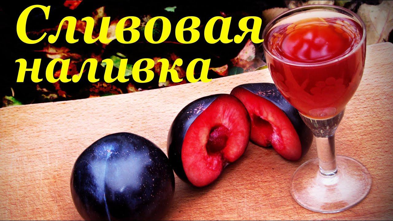 Вино из чернослива в домашних условиях - пошаговый рецепт 57