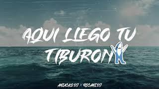 Download lagu AQUI LLEGO TU TIBURON 🦈 ANIASKO 🦈  ROSANI