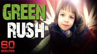 Green Rush | 60 Minutes | Medicinal Marijuana