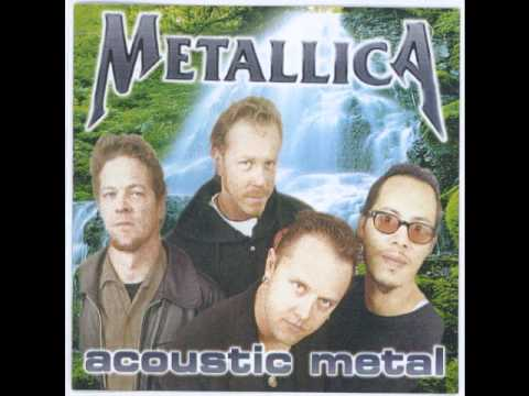 Metallica Poor Twisted Me (audio) Acoustic Metal