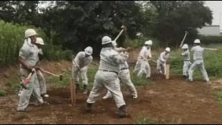 Awesome Japan Workers