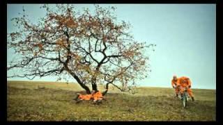Смысловые Галлюцинации - Последний день земли