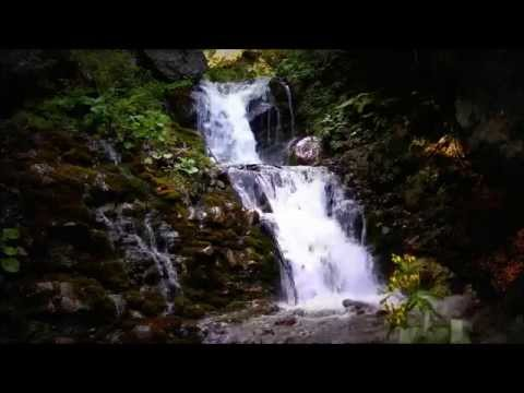 Urlatoarea Waterfall 1 hour Full HD 1080p Relaxation with Pure Nature (Cascada Urlatoarea)