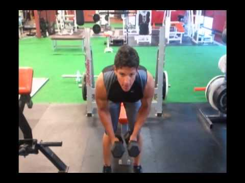 "Gyms and Trainers Highlights Andrew Garzon ""Back & Delt Workouts"""