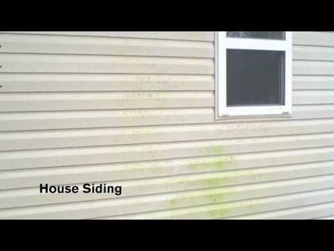 How To Video How To Remove Mold Mildew Stains On Exterior Siding