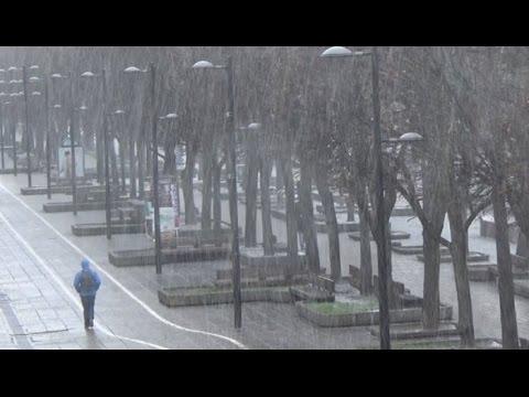 Kruša Kaune