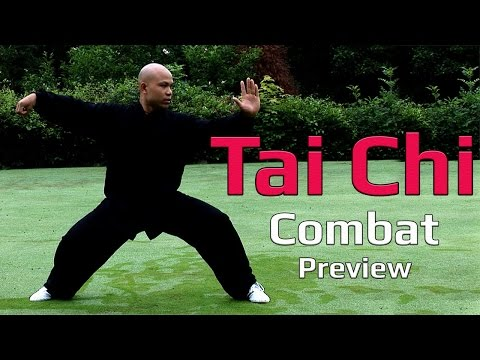 Tai Chi Combat 2 video Preview Image 1