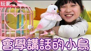 【玩具】仿真小寵物會模仿說話的公主小白鳥[NyoNyoTV妞妞TV玩具]