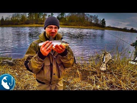 сезон рыбалки на сегодня